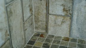 Inlaid tile work done by Complete Home Care, a bathroom remodeling company in Boca Raton, FL.